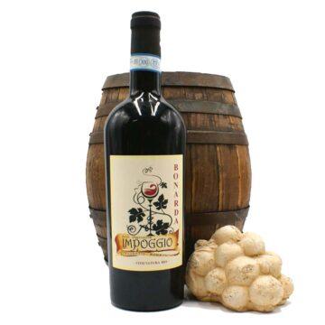 vino bonarda fermo